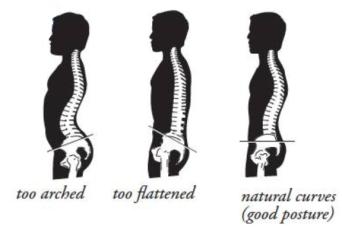 neutral-spine